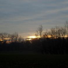 An understated sunrise!
