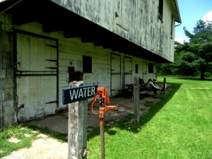 Short break at Scott Farm