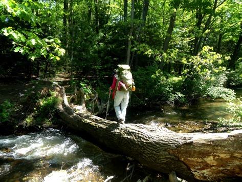 Google crossing the creek