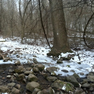 Stream crossing! Luckily the ice had melted on the rocks...although I did have my spikes in tow!