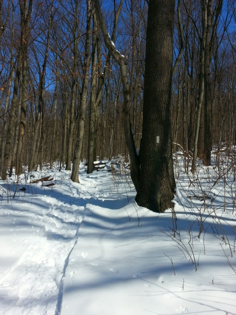 Winter on the  Appalachian Trail up to Weverton Cliffs