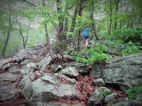 Climbing the Jumble!