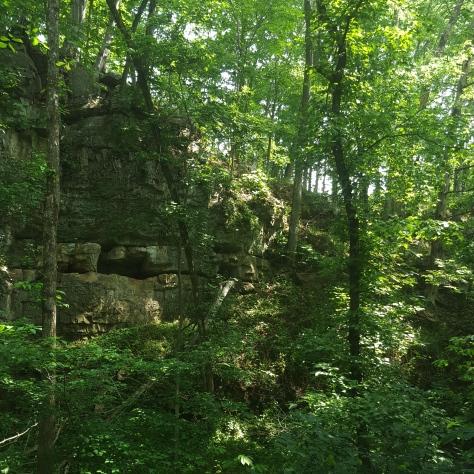 Towering Rock Wall