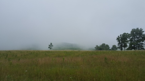 Myterious? Melancholy? Fog settles over Big Meadows