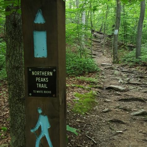 Starting the Blue Trail just off Mt. Ephraim Road
