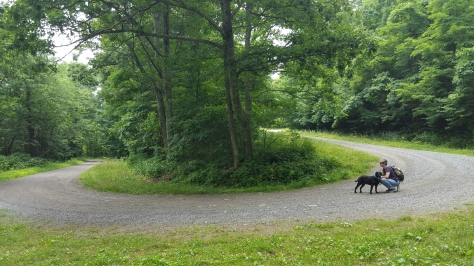 The first big hairpin turn, along with Little Caesar and Farmdog Jett.