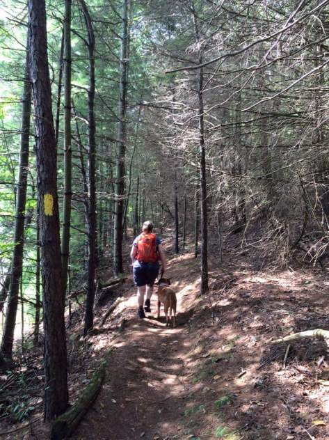 Thanks Queen V for the photo! Me & Sidekick Pauli in the Pines
