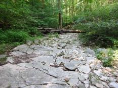 Limestone creek bed